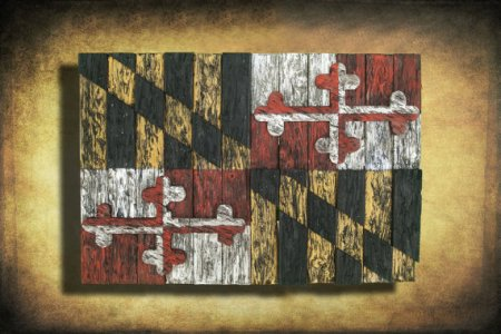 maryland flag art