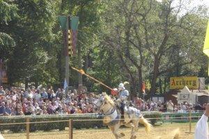 maryland renaissance festival joust