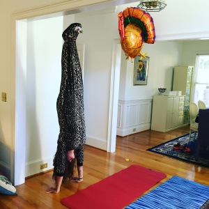 Cheetah Yoga Handstands