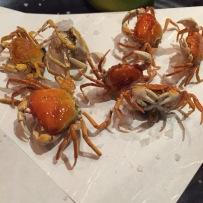 azumi sawagani crabs